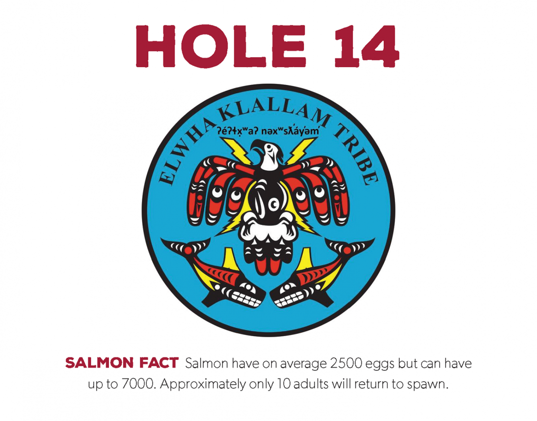 hole sponsors-2021_Page_14